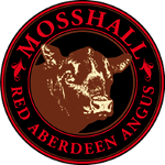 Mosshall Red Aberdeen-Angus